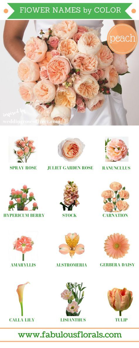 163 Beautiful Types of Flowers + A to Z With Pictures | Flower ...