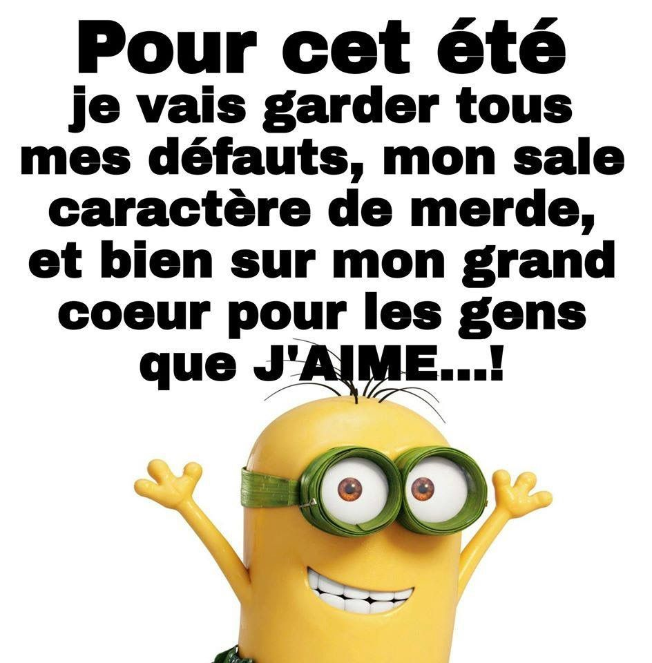 Pin By Michelle On Les Minions Pinterest Citations Humour
