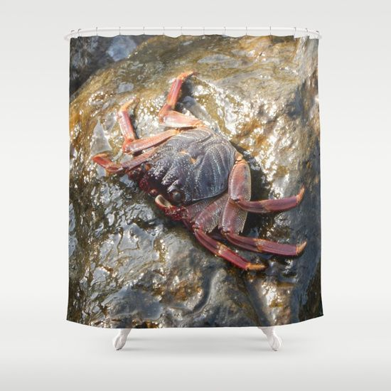 Buy Shower Curtains Featuring The Crab By Mehrfarbeimleben Made