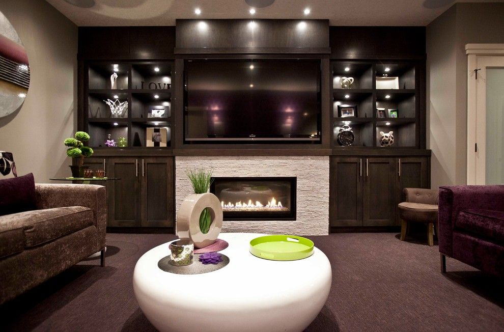 ElectricfireplaceentertainmentcenterBasementTransitionalwith - Built in cabinets entertainment center design pictures remodel