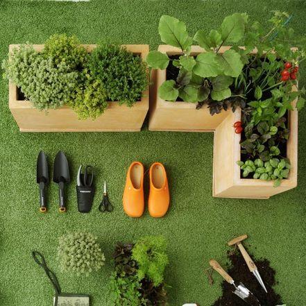 orto sul balcone | gardening | Pinterest | Orto, Coltivare e Manuale