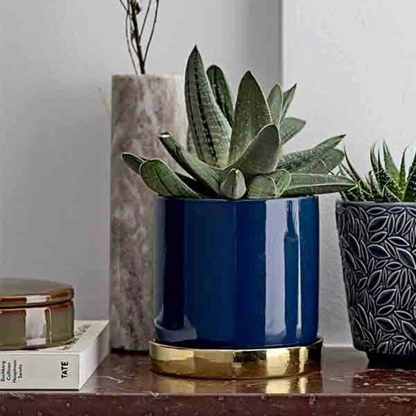 Cache Pot Rond En Ceramique Bleue Base Couleur Laiton
