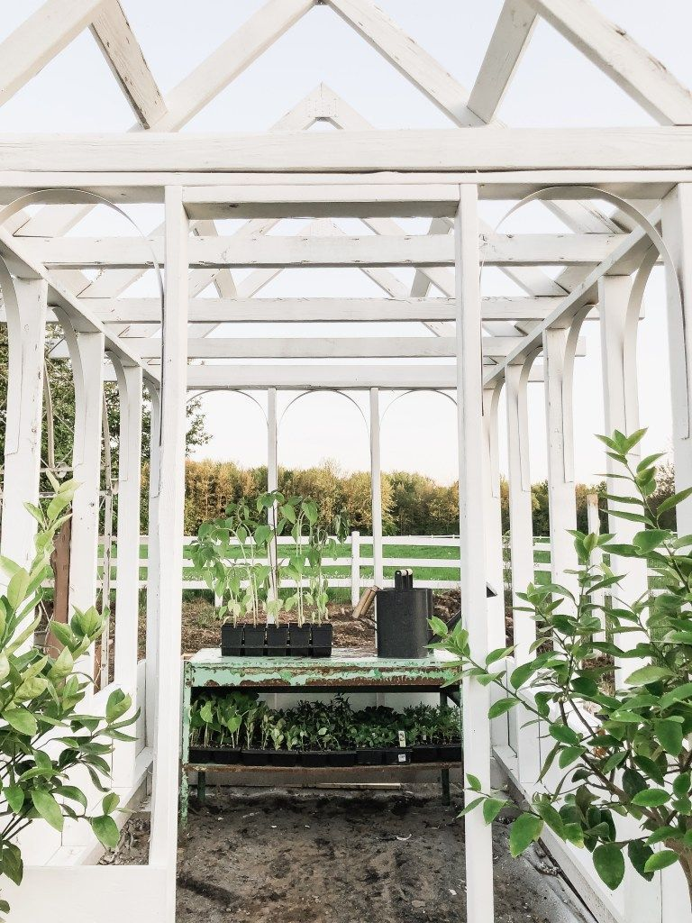 Selection of Style for your DIY Greenhouse Greenhouse