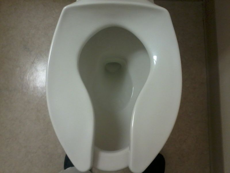 Most Comfortable Toilet Seat Google Search With Images