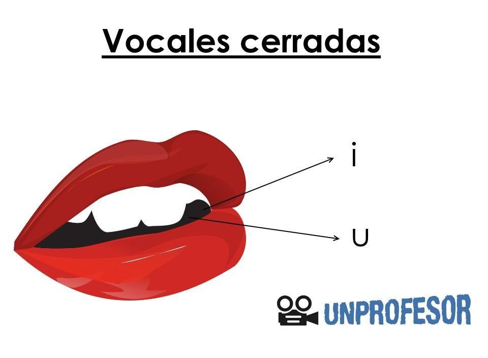 Cuáles Son Las Vocales Abiertas Y Cerradas Con Ejemplos Vocal E Ejercicios Para Preescolar Diptongo