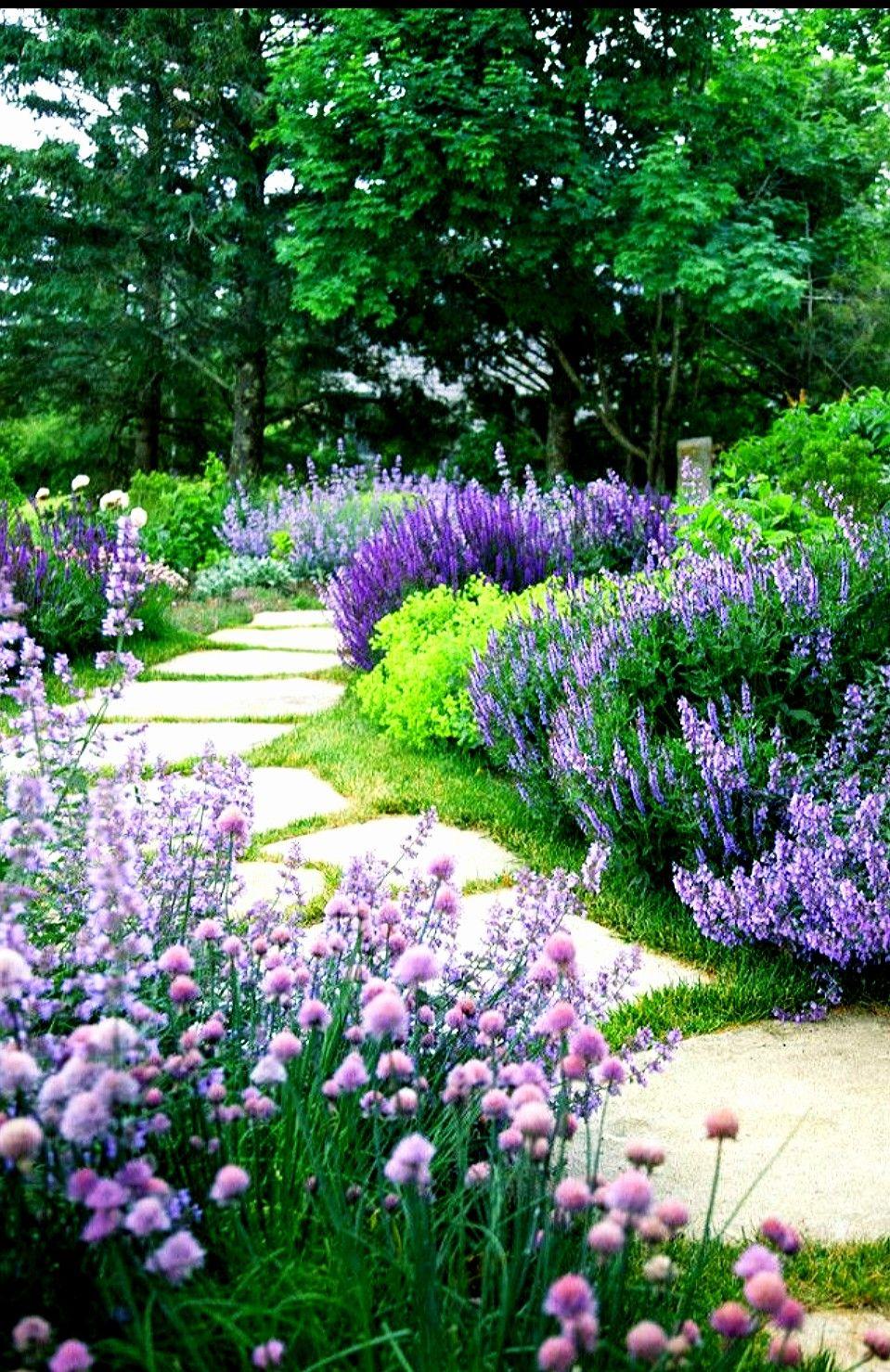 House garden landscape  Pin by Judith Ottema on Tuin  Pinterest  Gardens Garden ideas and