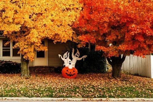 Afbeelding via We Heart It http://weheartit.com/entry/200395225/via/19720276 #amazing #autumn #beautiful #decoration #fall #ghosts #Halloween #house #nature #october #pumpkin #street #tree