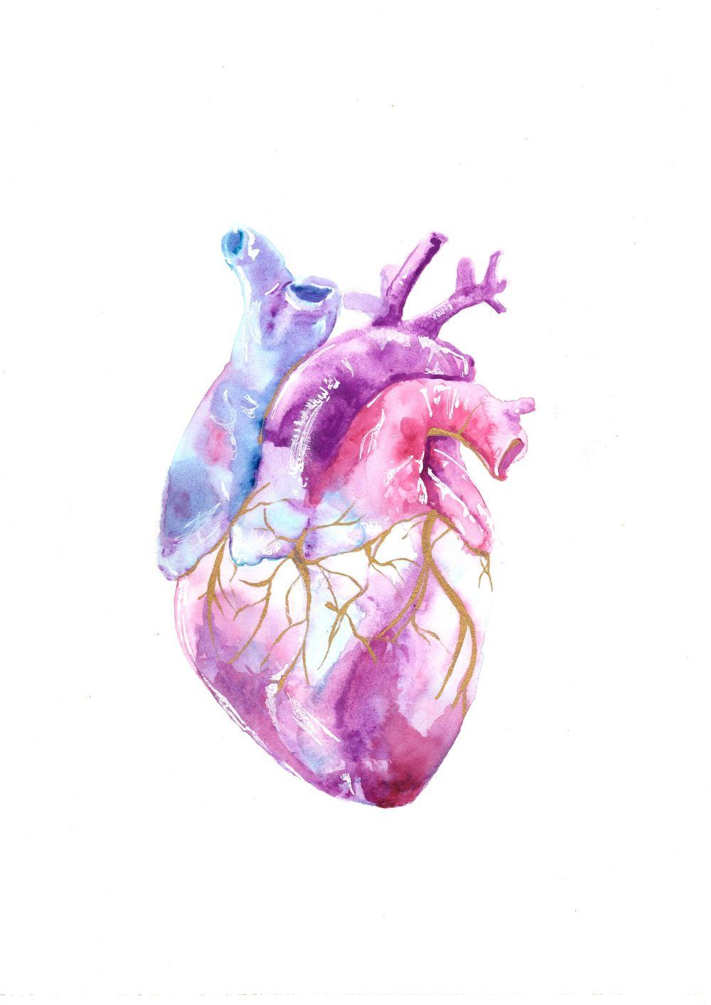 Image of Heart | ART | Pinterest | Acuarela, Fondos y Anatomía
