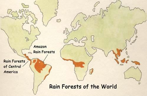 Exploring nature educational resource places id like to go amazon rainforest of south america gumiabroncs Gallery