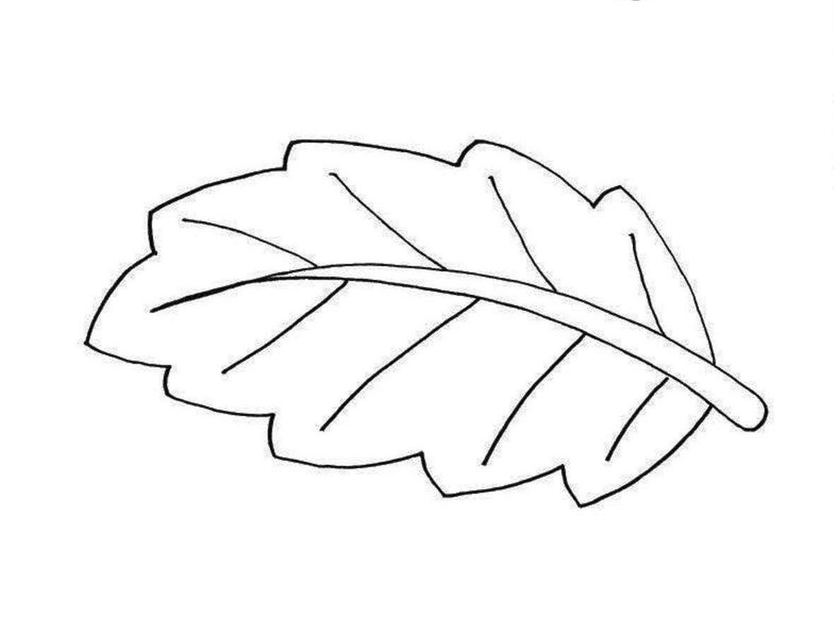 Leaves Coloring Pages And Print The Other Design Of Banana Leaf Coloring Pages