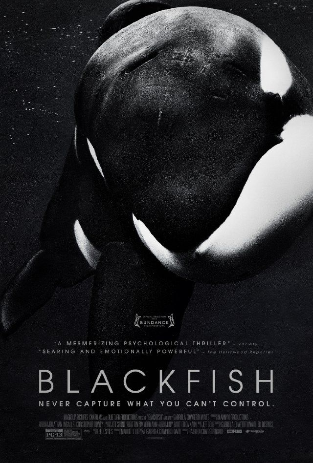 Blackfish Documentary 2013 With Images Blackfish Movie