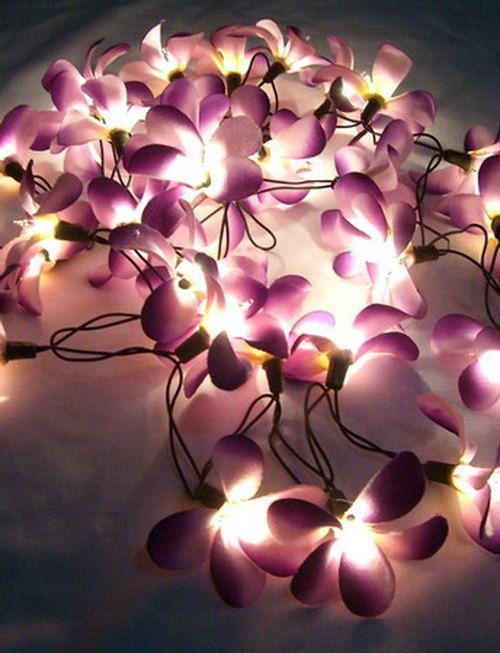 35 Flower Frangipani Premium Home / Bedroom Hanging Ceiling Wall Decor String  Lights   Floral Fairy