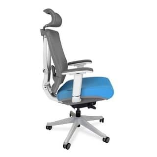 For Autonomous Ergochair Premium Ergonomic Office Chair Get Free Shipping At