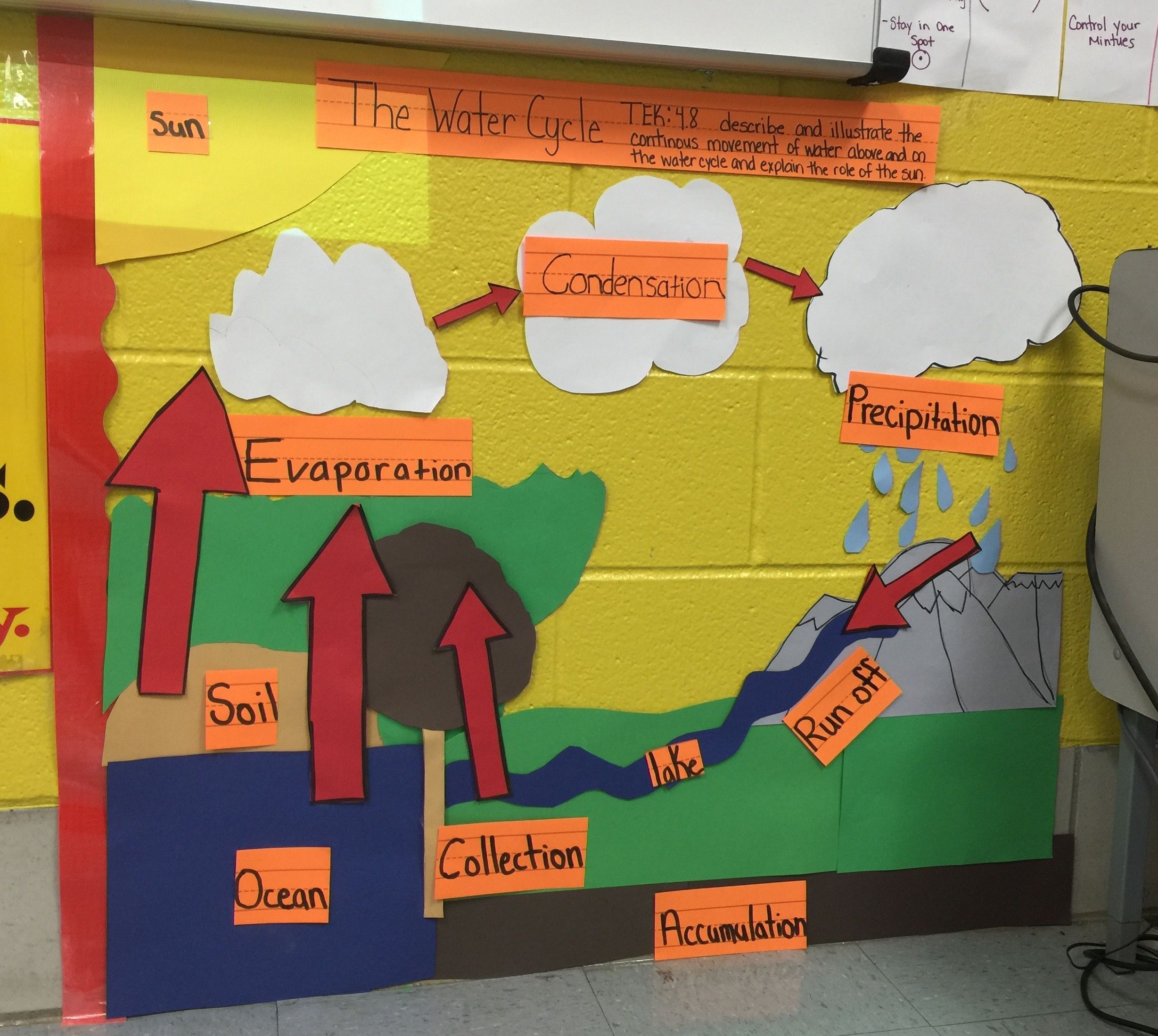 Science TEKS 4.8B Water cycle | Science Interactive Word Walls ...