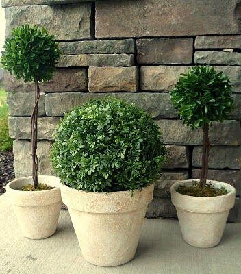 Clay Pot Topiary Topiary Diy Topiary Clay Pots