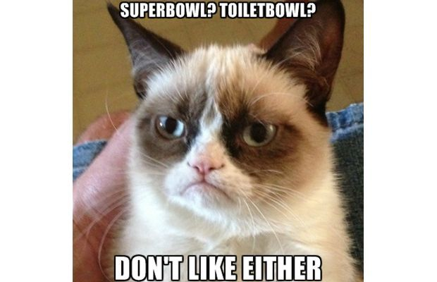 Grumpy Cat Super Bowl Meme