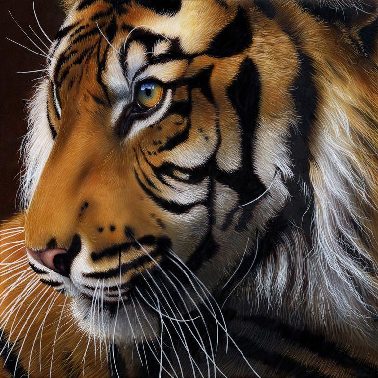 Error Saatchi Art Sumatran tiger, Tiger profile, Tiger