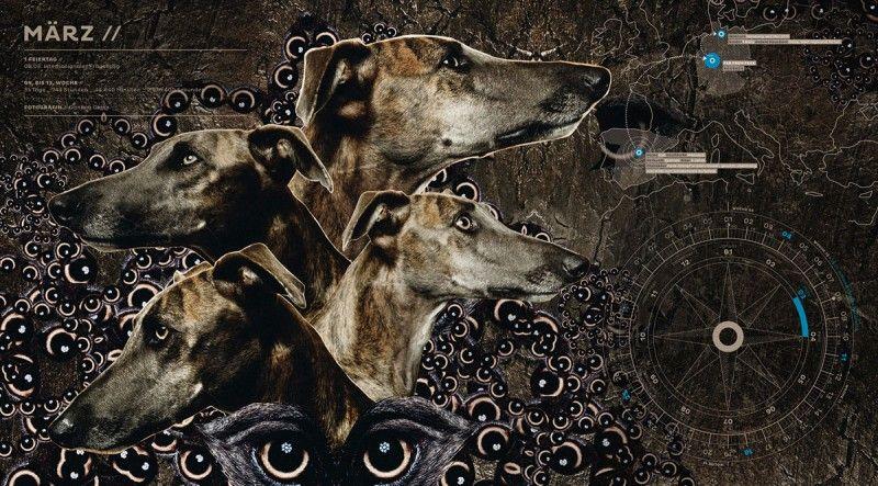 4 Greyhounds