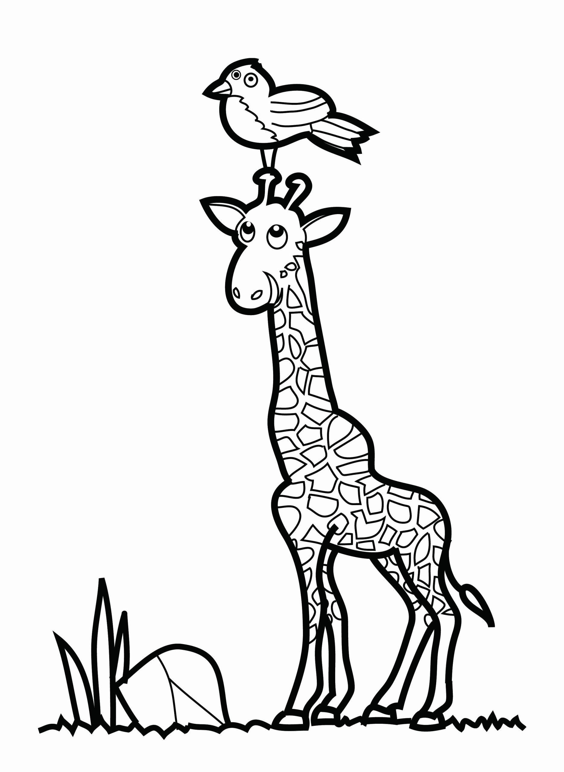 Coloring Books For Toddler New Malvorlagen Fur Kinder Ausmalbilder Giraffe Kostenlos Animal Coloring Pages Giraffe Coloring Pages Toddler Coloring Book