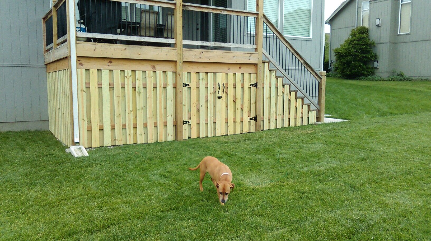 Fence Under Deck Storage Shadow Box Fence Deck Apron Outdoor