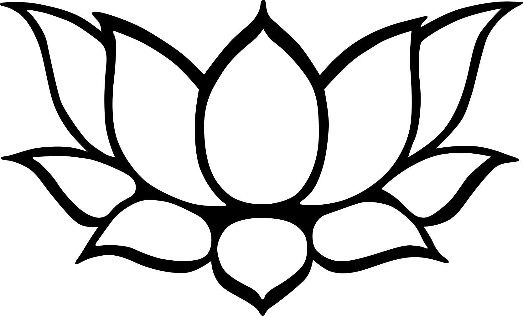 Flor De Lotus Com Imagens Flor De Lotus Desenho