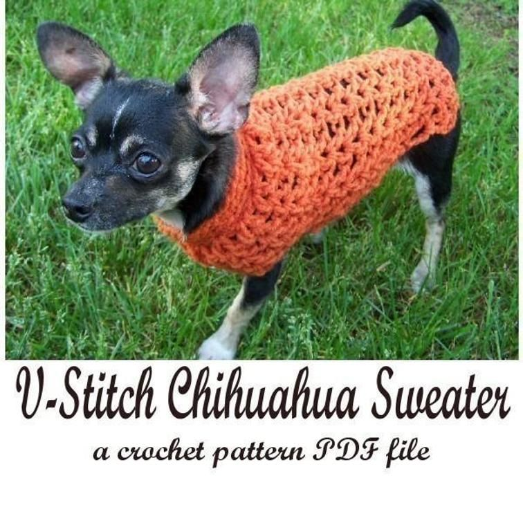 V Stitch Chihuahua Sweater Pattern Craftsy Crochet Projects