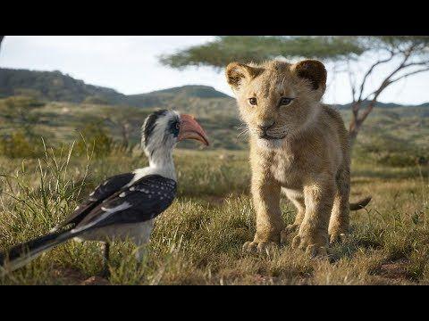 מלך האריות טריילר 2019 The Lion King Youtube The Lion