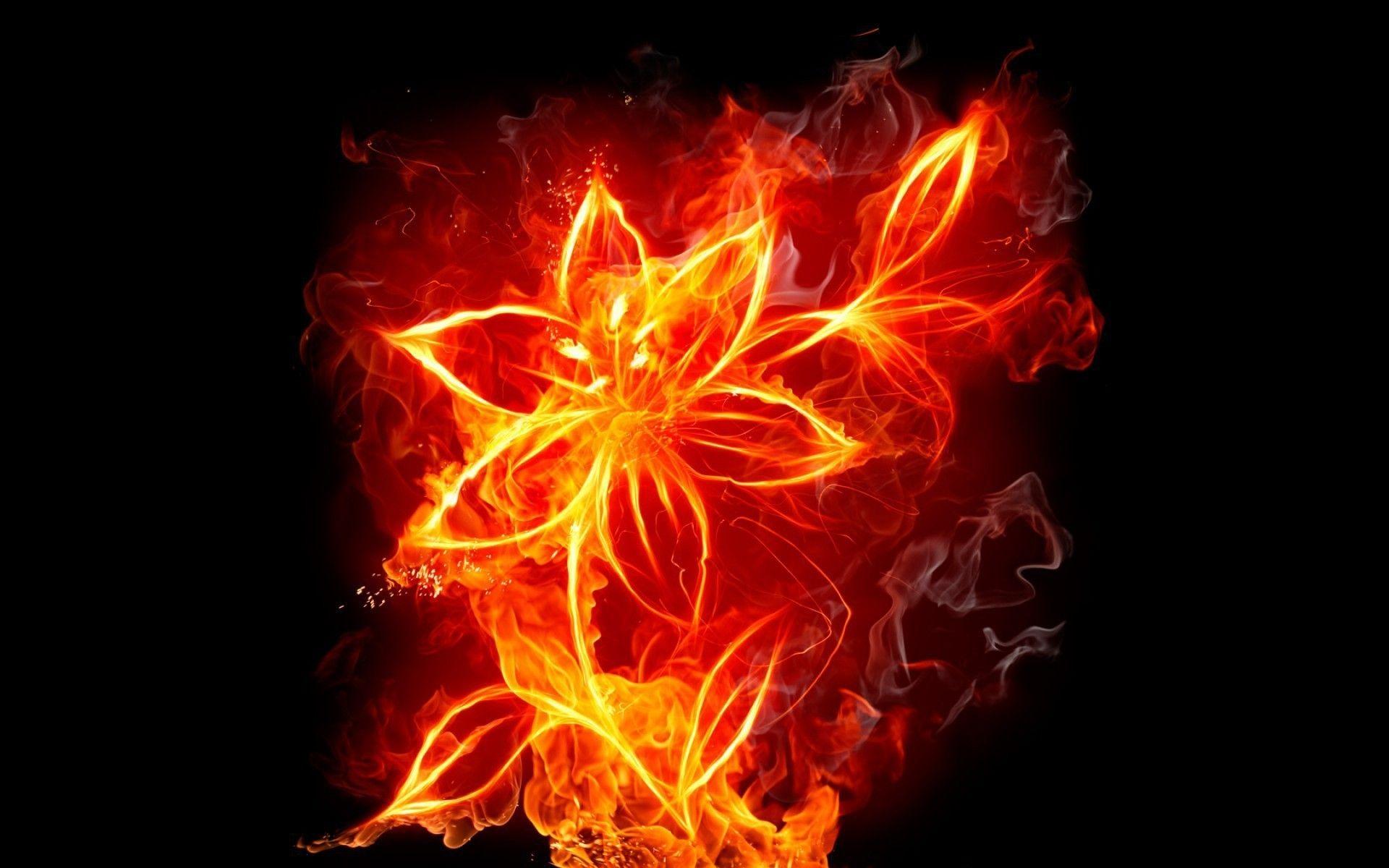Digital Art Fire Flower Flames Wallpaper Fire Flower Fire Photography Fire Art