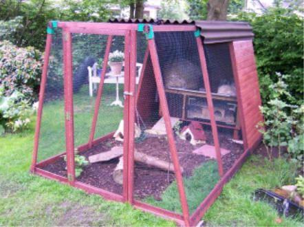 herzlich wilkommen meerschweinchenau engehege pinterest kaninchen und g rten. Black Bedroom Furniture Sets. Home Design Ideas