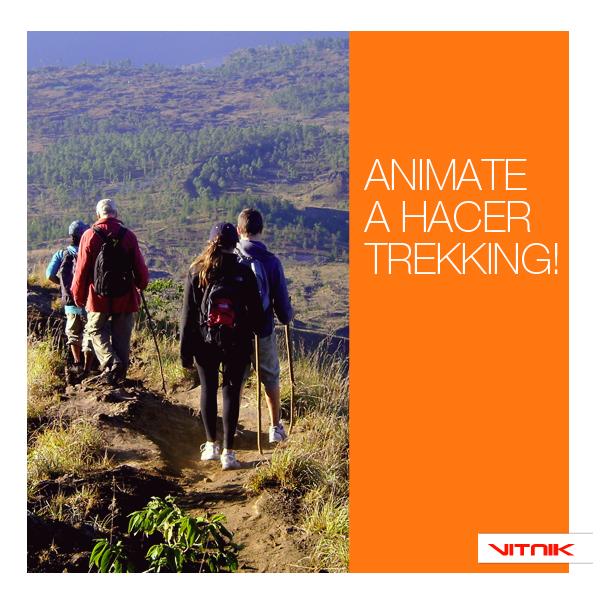 Es una actividad de pura conexión con la naturaleza y es perfecta para hacer con amigos o familia!