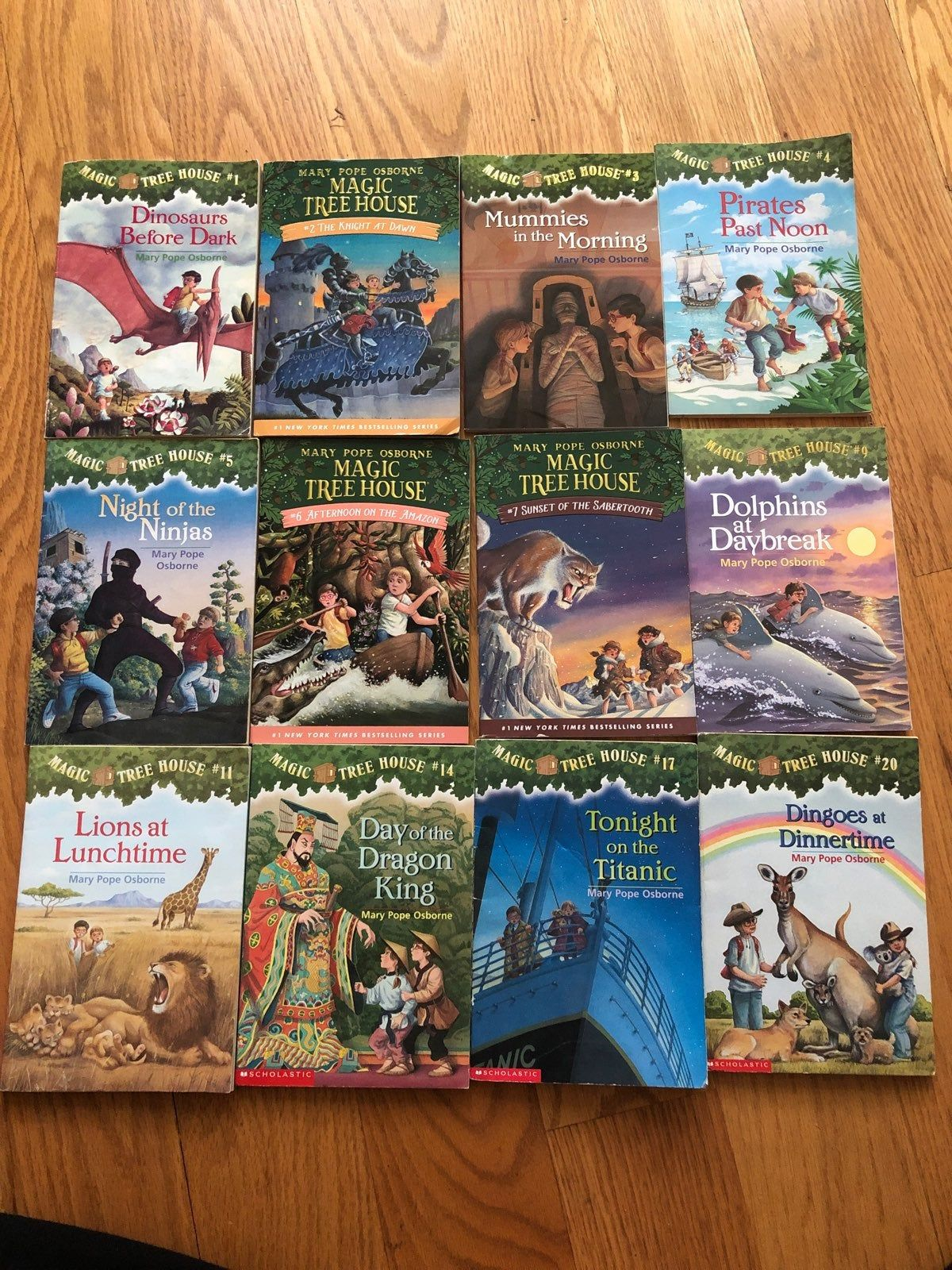 Lot Of 12 Magic Tree House Books By Mary Pope Osborne