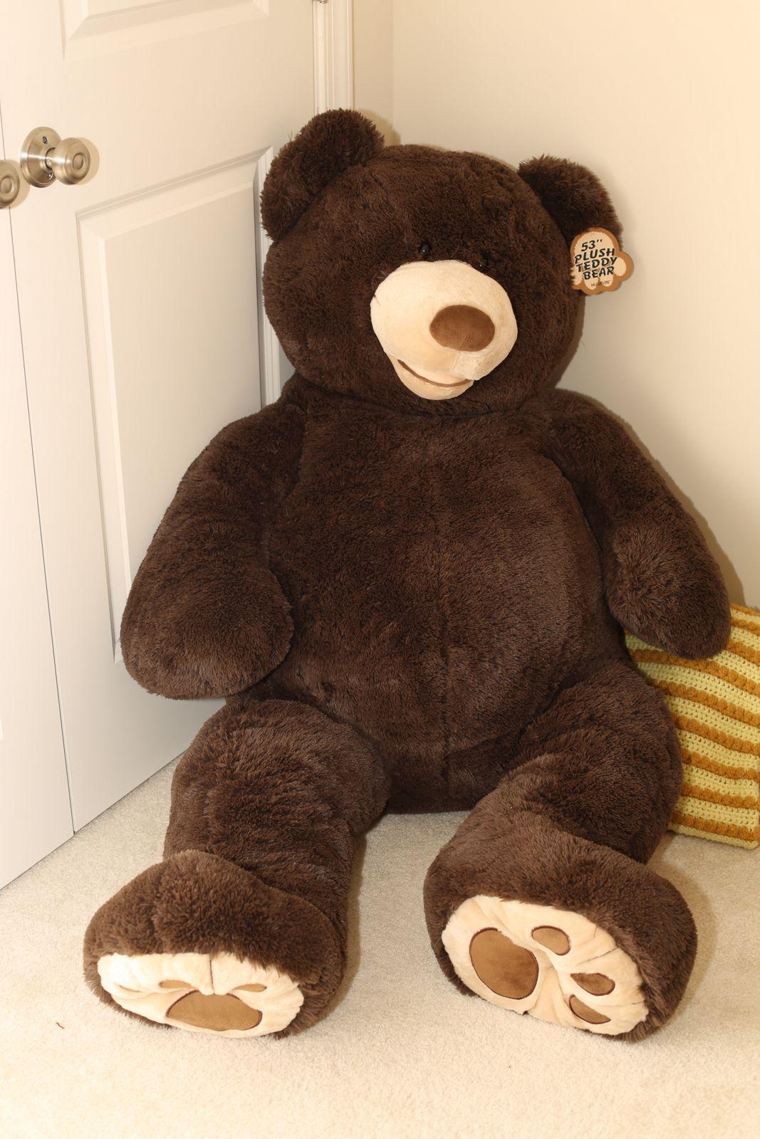 I want one of these giant costco bears! So cute!   Costco bear ...