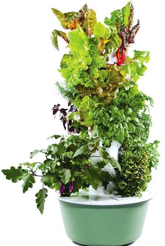 Juice plus hydroponic garden tower garden pinterest - Hydroponic container gardening ...