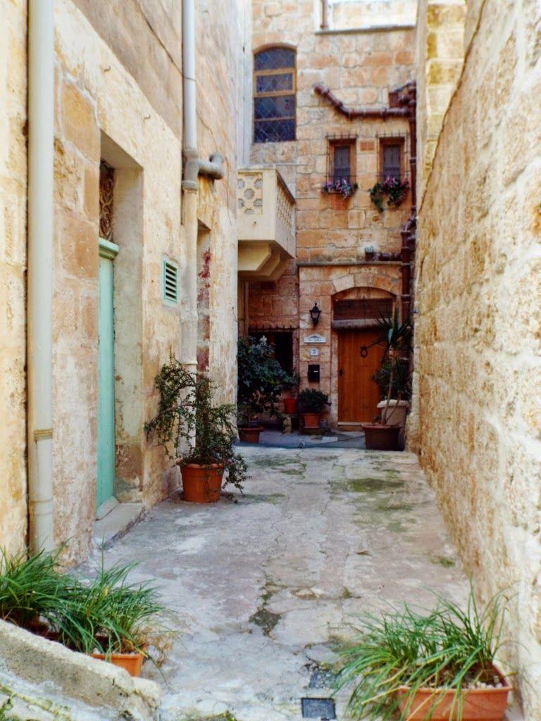 SecondHand Hedgehog Postcards from Malta Malte