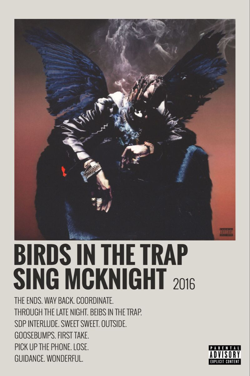 Birds In Trap By Maja In 2020 Music Poster Music Poster Design Film Posters Minimalist
