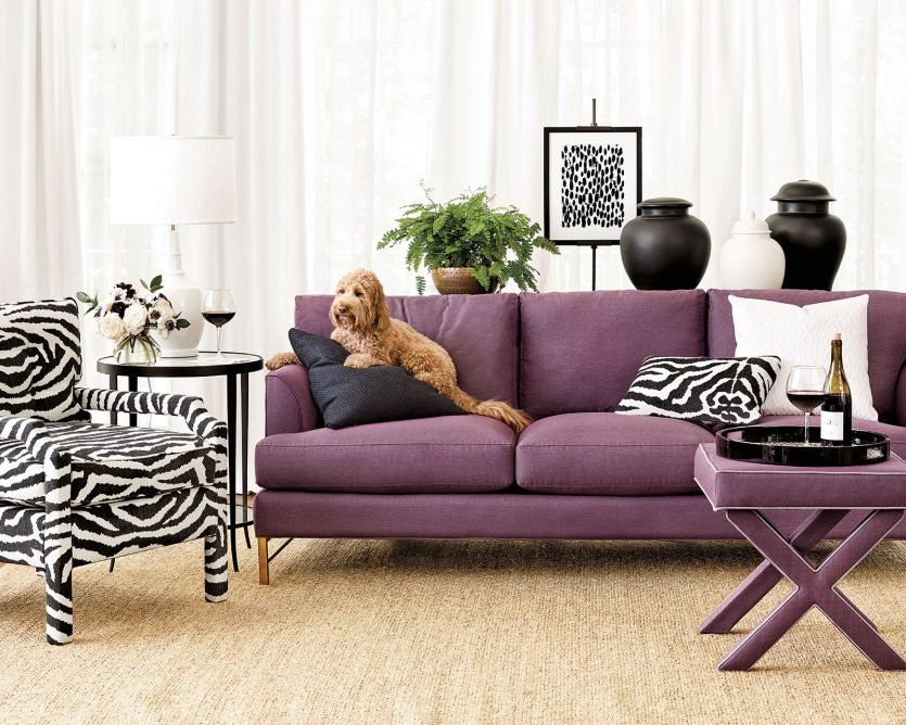 Best Sofas For Dogs Cool Couches Best Sofa Furniture