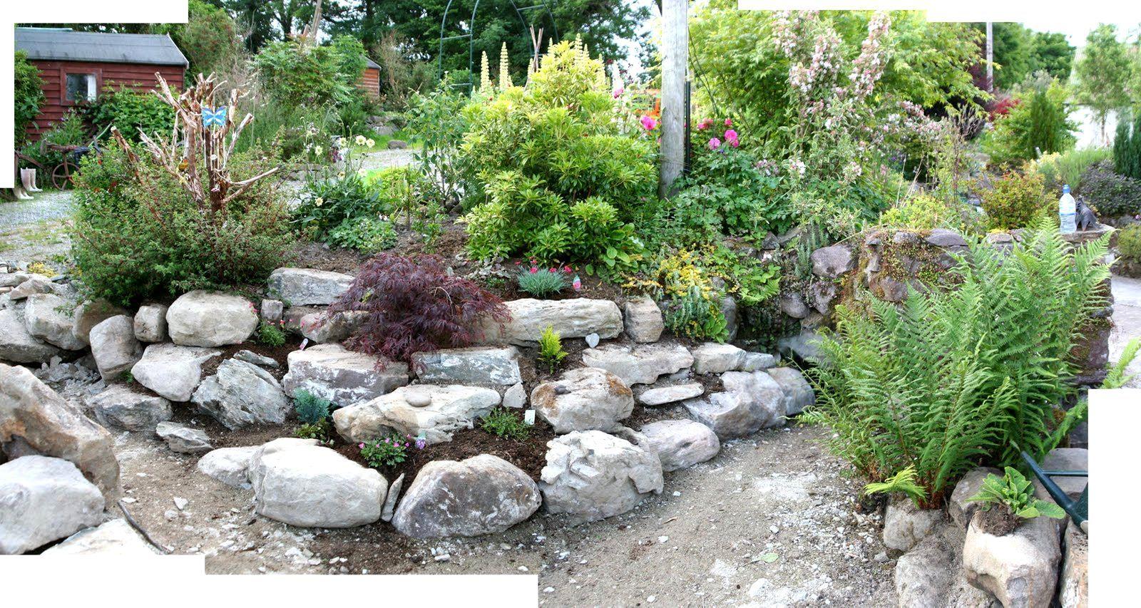 Rockery Ideas For Small Gardens Google Search Rockery Garden Small Gardens Small Garden Rocks