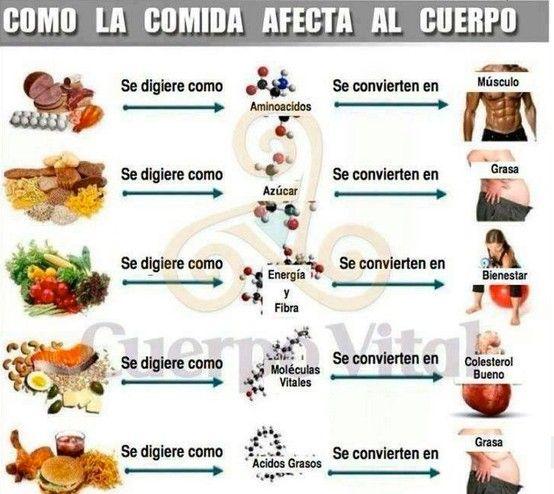 Como la comida afecta al cuerpo | Sport & Exercices