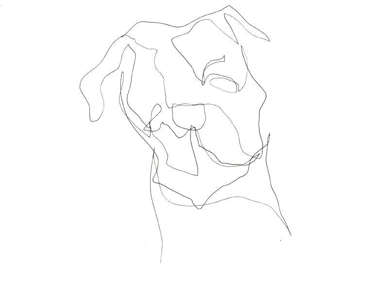 Leigh Jackson/Noisy Dog Studio  Original Continuous Line Drawing