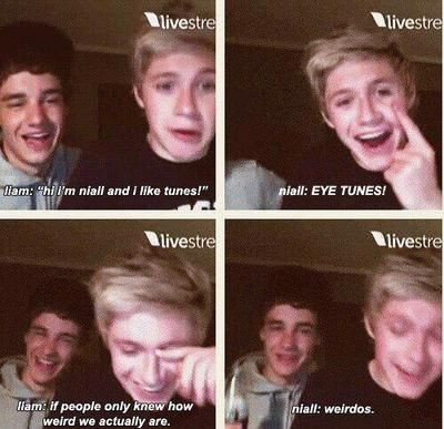#one direction funny pictures on Tumblr