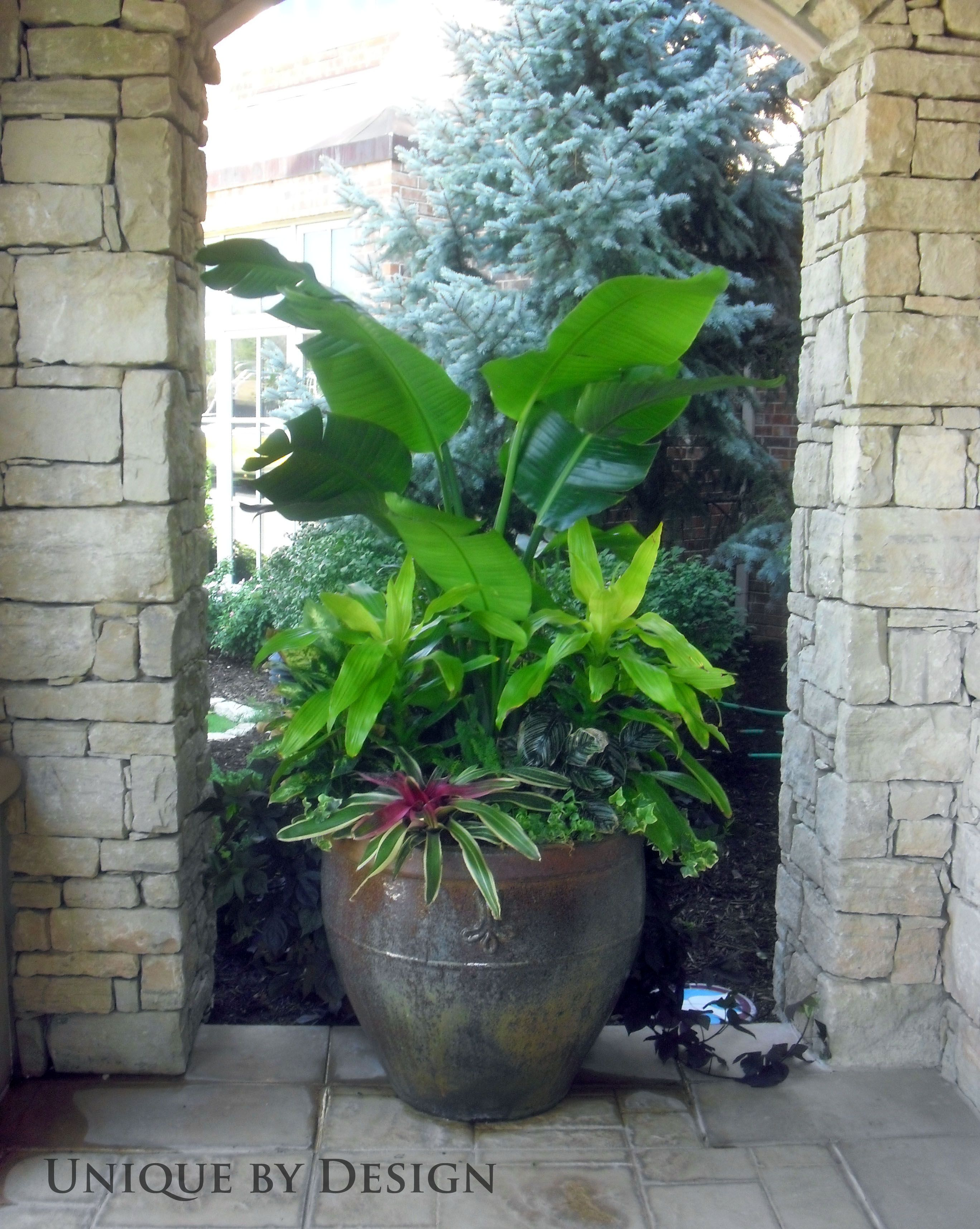 Unique by design l helen weis container gardening - Unusual planters for outdoors ...