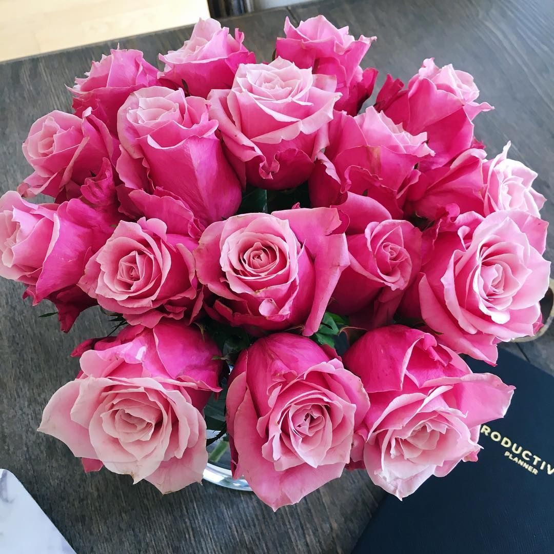 Mimi Ikonn Office London Pink Roses Flowers Rose Bloom
