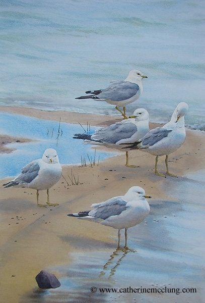 Original Oiseau D Aquarelle Art Plage Et Peinture Oiseau
