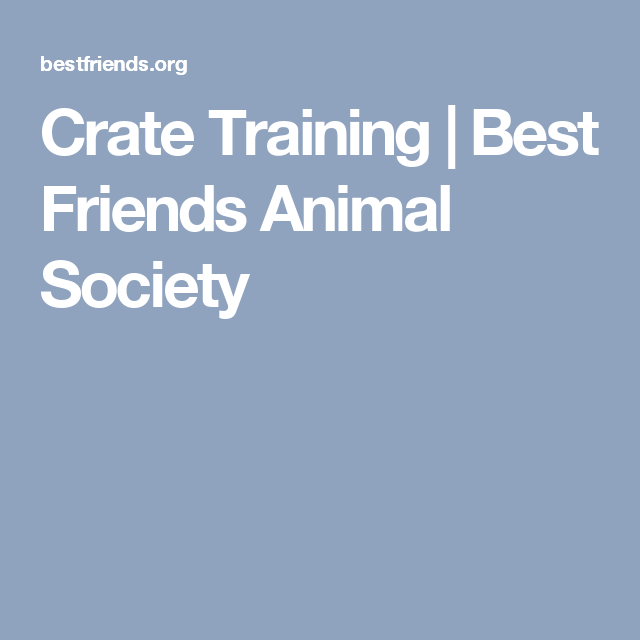 Crate Training The Benefits For You And Your Dog Dog Adoption