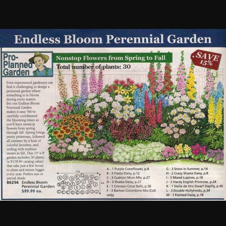 Three Season Perennial Garden Plan