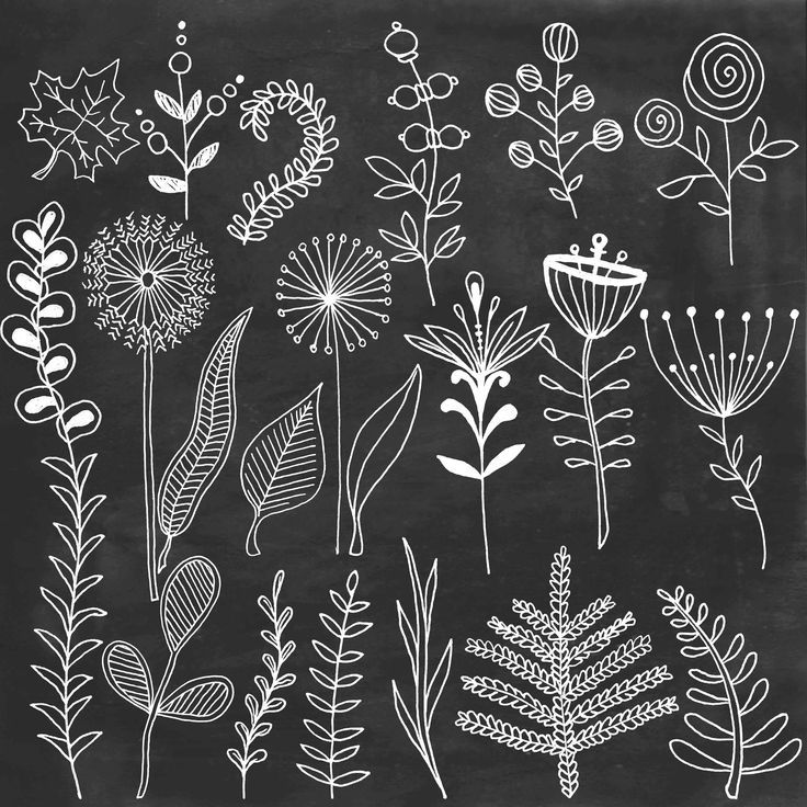 Chalk floral clipart Chalkboard flowers leafs hand painted clip art digital Chalk doodle elem...