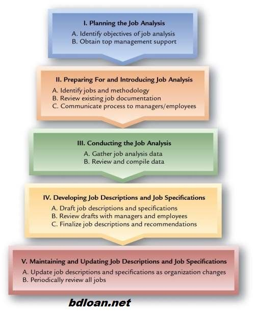 Human Resources Management Job Analysis part five BUSINESS - human resource job description