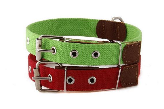 Cotton Webbing & Leather Dog Collar Adjustable Classic
