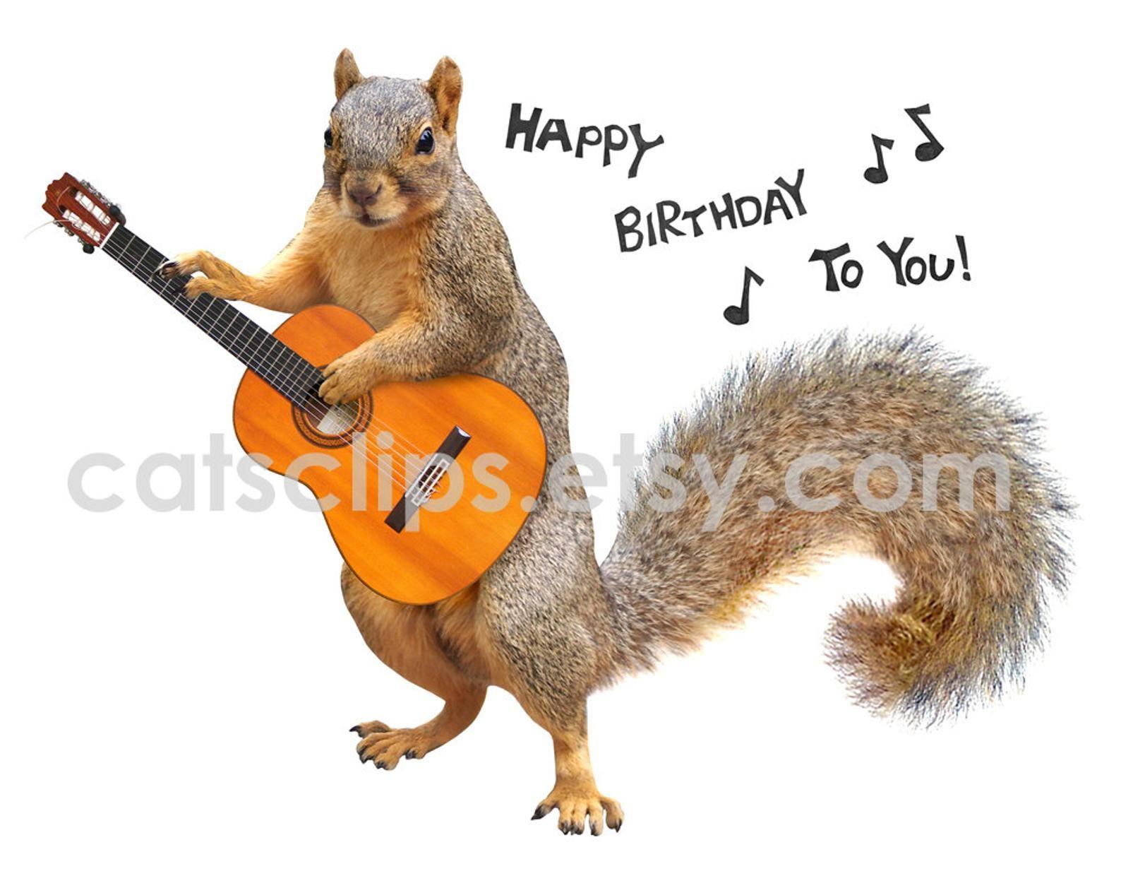Squirrel Playing Guitar Happy Birthday Printable Birthday Card Happy Birthday Wishes Cards Happy Birthday Guitar Funny Happy Birthday Pictures