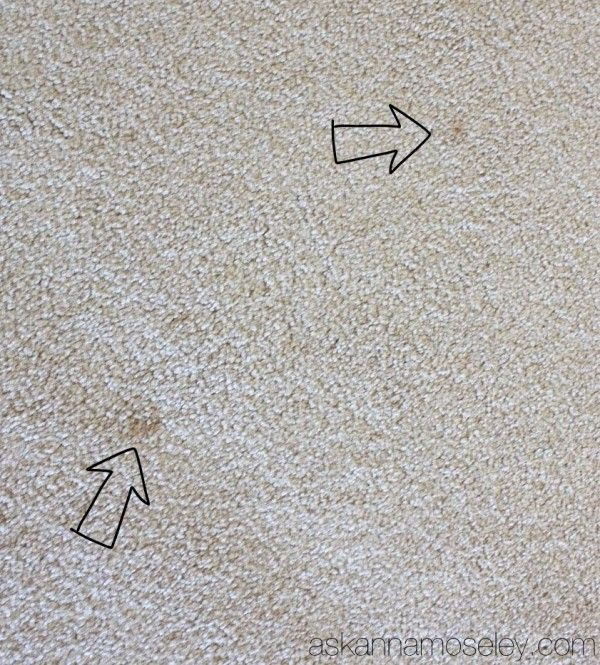 How To Get Stains Out Of Carpet (old, New & Pet Stains